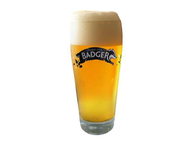 Copo Badger 500 ml